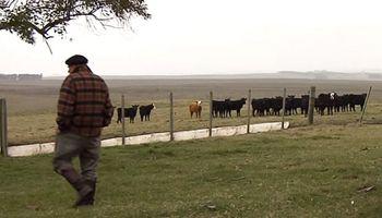 Sueldo del peón rural: llega el segundo tramo de incremento de 2019