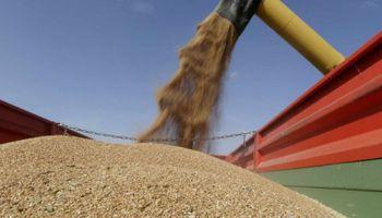 """Cepo al trigo: """"La medida es arbitraria y fuera de toda lógica"""""""