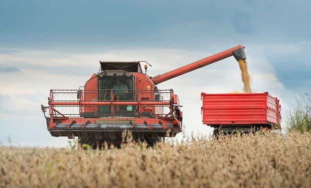 La lista de factores que definen hoy la tendencia de la soja, el trigo y el maíz