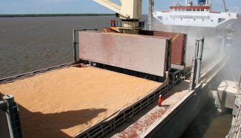 Ingresaron 122 millones de dólares de la agroexportación en la última semana