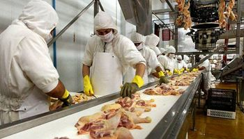 Salarios en la actividad avícola: cuáles son las nuevas remuneraciones mínimas