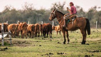 Asignación extraordinaria para trabajadores rurales: alcance y condiciones de pago