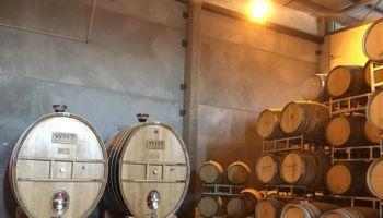 Las exportaciones de vino a granel aumentaron 183% en lo que va del año