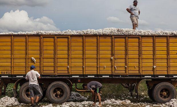 Carga de algodón a granel. Avellaneda. Abril de 2014.