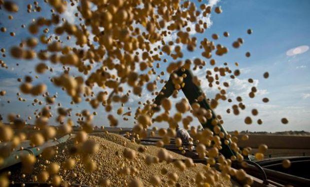 La producción agrícola de América corre riesgo si no se usa bien el agua