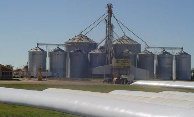 Cerealeras ingresaron ya u$s 167 millones