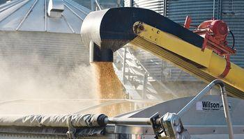 Informe del USDA: los datos fueron buenos para la soja, pero negativos para el maíz