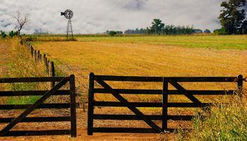 Contribuciones patronales del empleador rural: cambios para Pymes