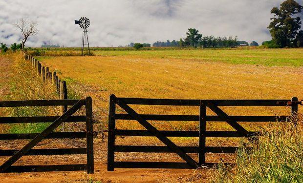 PYMEs. Incidencia de su reglamentación en materia de contribuciones patronales del empleador rural.
