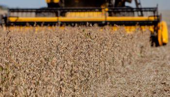 Empresas agroexportadoras aclararon el impacto del control de cambios sobre el sector