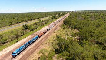 Belgrano Cargas: con más de 200 mil toneladas transportadas marcó un récord histórico