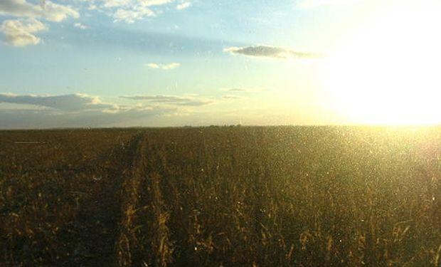 Sin lluvias y con ola de calor, se deterioran el maíz y la soja