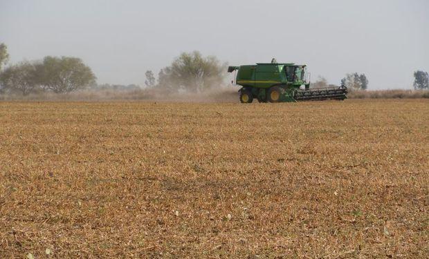 Santa Fe y Buenos Aires aclararon qué deben presentar los productores para circular
