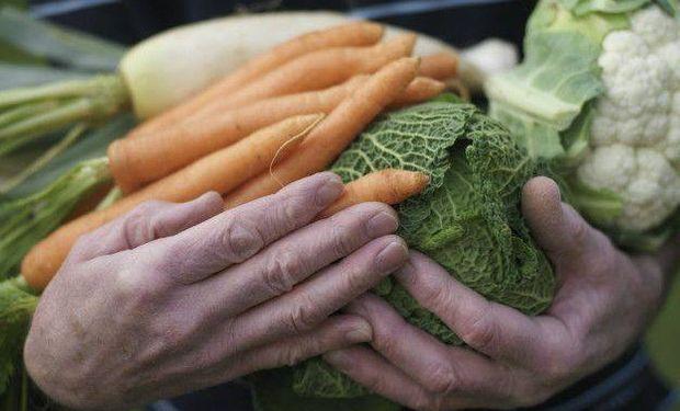 """""""Hay un mercado mundial gigante que se está abriendo que es el de productos orgánicos"""", contó Campodónico."""
