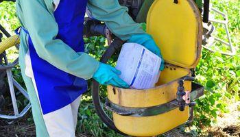 Campo limpio: la importancia de reciclar los envases de agroquímicos