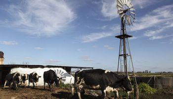 Bienes Personales: muchos productores podrían ser alcanzados por la alícuota máxima