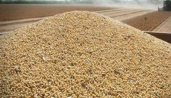 Actualización de remuneraciones para el sector semillero en todo el país