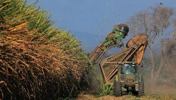 Actualizan el precio del bioetanol y el biodiésel, aún por debajo del pedido de productores
