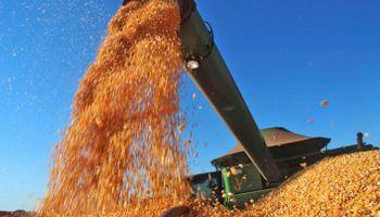 Sin precedentes: Brasil cosechó un récord de 242 millones de toneladas de granos