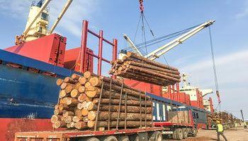 Por primera vez, Argentina exportará madera al mercado indio
