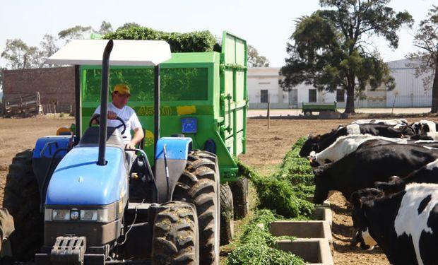 La oferta de Fraga está pensada para que el productor genere la provisión para su ganado.