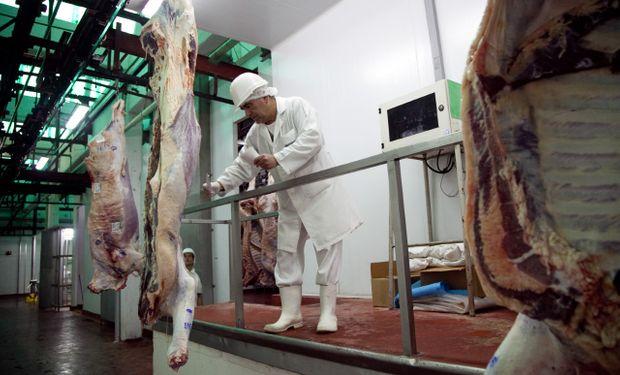 Se comprobaron irregularidades en los registros y faena de animales de origen incierto.