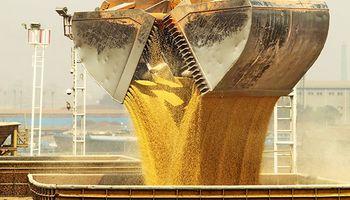 China duplicó las compras de soja brasilera durante octubre