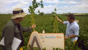 Relax: los cultivos ya tienen quién los proteja del estrés