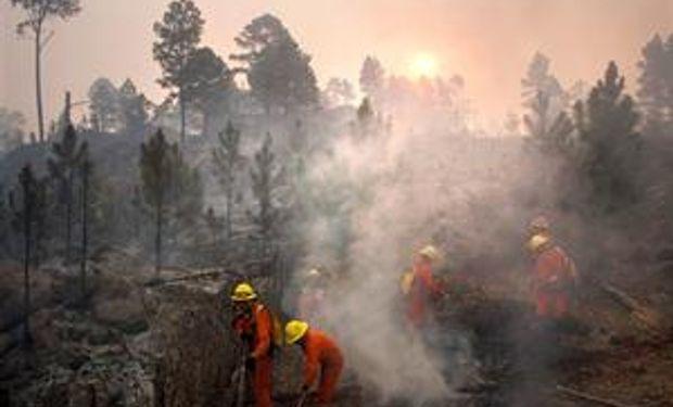Se extienden los incendios por la ola de calor en casi todo el país