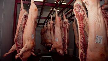 Exportar cerdo a China: una gran oportunidad que puede chocar con un cuello de botella