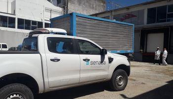 Pescado y fiambres no aptos para consumo: el resultado de las últimas inspecciones del Senasa