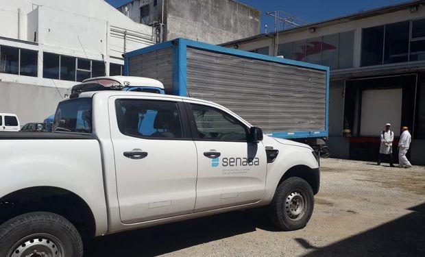 Se impidió que más de 7.000 kilogramos de pescado no aptos para el consumo llegaran a la mesa de los argentinos.