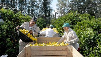 Anuncio oficial: 24.000 establecimientos agroindustriales se verán beneficiados
