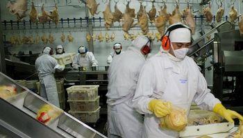 Producción avícola: actualizan requisitos sanitarios para exportar a China