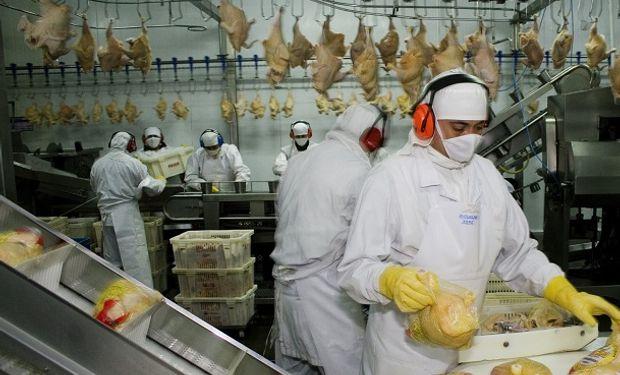 Producción avícola.