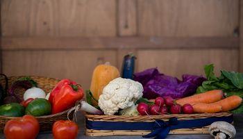 Carnet de Manipulador de Alimentos: los puntos más relevantes de la normativa