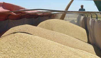 Acuerdo entre la AFIP y Agroindustria por el sistema de liquidación de granos