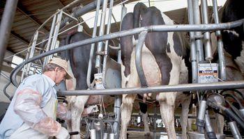Una radiografía del sector lácteo muestra que la producción se estancó
