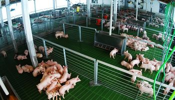 La Ley sobre el interés nacional de la sanidad de animales y vegetales fue reglamentada