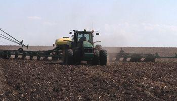 Atrasos en la siembra de maíz otorgan sustento a los precios en Chicago