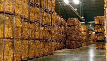 Productores de tabaco acordaron un aumento de precios del 46 %