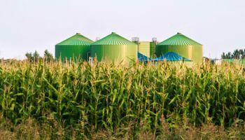 """Claves de la """"bioeconomía"""" que define la agenda de los agronegocios"""