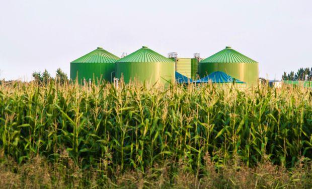 Hacia adonde va el mundo: la agroindustria del siglo XXI se basa en el conocimiento y en el cuidado del medio ambiente y la gente.