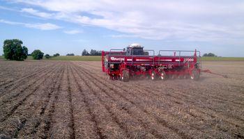El buen clima permite avanzar con la siembra de gruesa