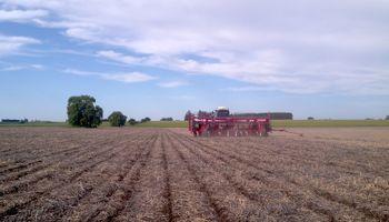 La siembra de soja ya superó el 70% del área estimada