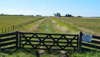 El mercado inmobiliario rural busca dejar atrás ocho años de pobre desempeño