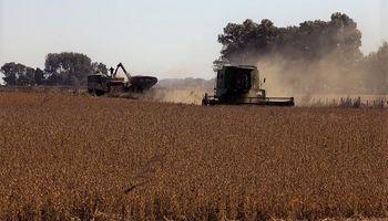 Alertan que en Entre Ríos el margen bruto será desfavorable para la soja de segunda