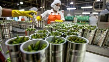Estiman que la agroindustria genera 750 mil puestos de trabajo