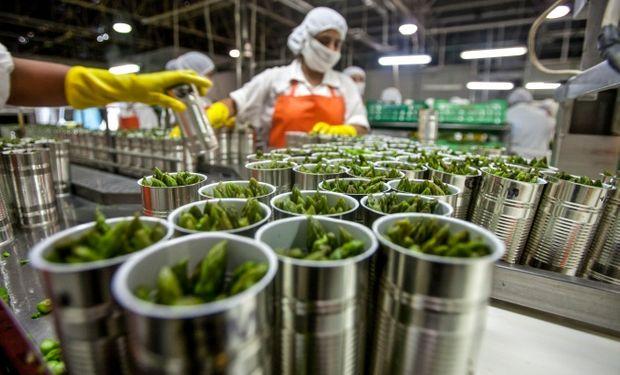 Mirá la relevancia del sector agroindustrial para la economía argentina.