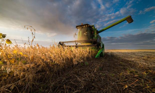 Se anticipa un 2019 con muchas grandes novedades en el rubro cosecha.